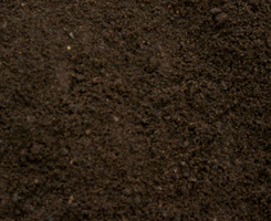 Virgin Top Soil